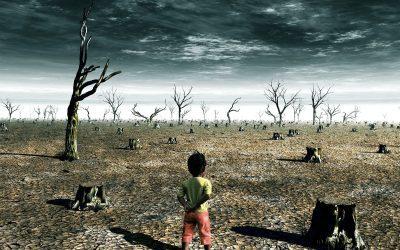 Az ökoszorongás és klímadepresszió nyomában